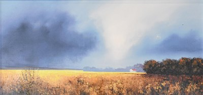 Lot 1024 - Barry Hilton (Contemporary) ''Shades of Dawn''...