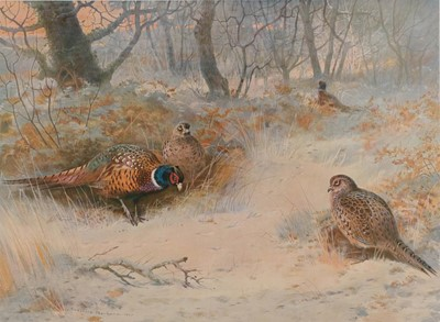 Lot 434 - After Archibald Thorburn FZS (1860-1935)...