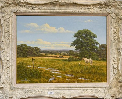 Lot 1046 - British school (Contemporary) A horse in a...