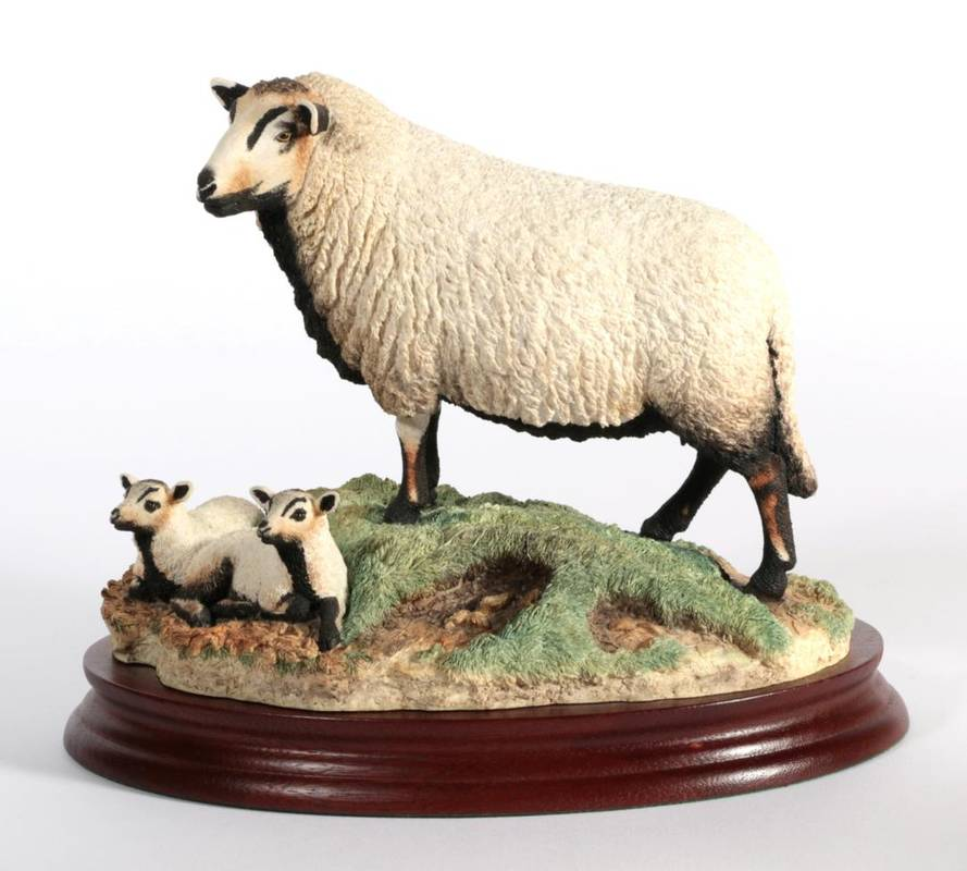 Lot 1 - ^ Border Fine Arts 'Badger Face Ewe and Lambs' (Torddu), model No. B1441 by Ray Ayres, limited...