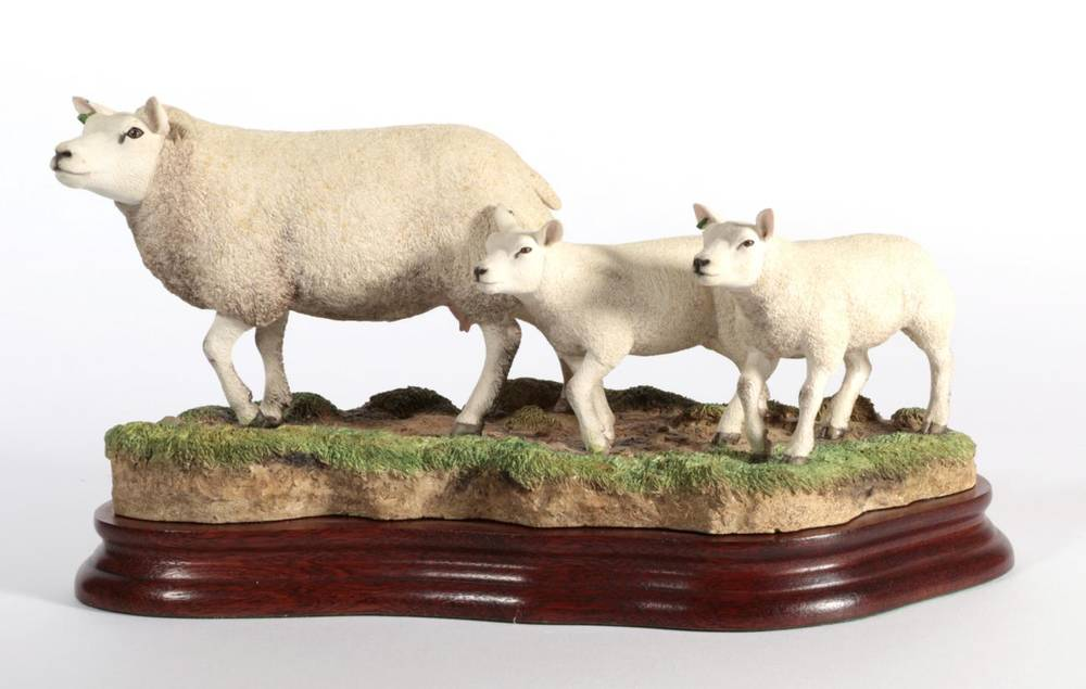 Lot 2 - ^ Border Fine Arts 'Beltex Ewe and Lambs', model No. B1182 by Ray Ayres, limited edition 84/500, on