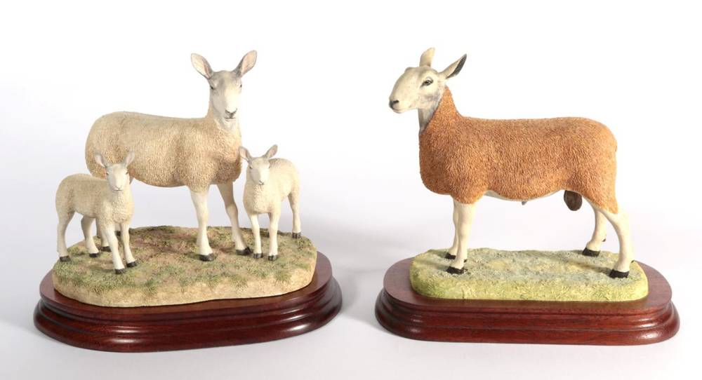 Lot 9 - ^ Border Fine Arts 'Blue Faced Leicester Tup' (Style One), model No. B0149 by Ray Ayres,...