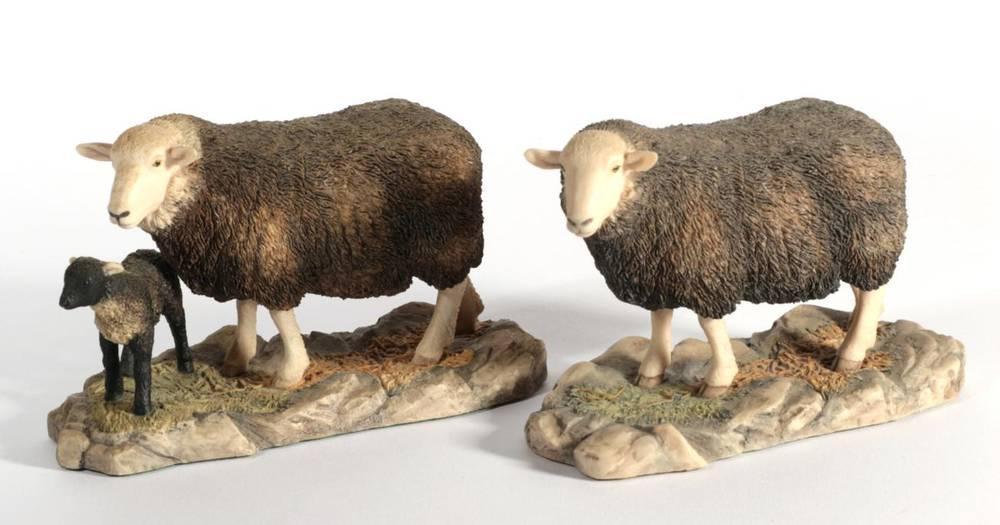 Lot 17 - ^ Border Fine Arts 'Herdwick Ewe', model No. 118 by Ray Ayres and 'Herdwick Ewe and Lambs',...