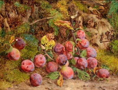 Lot 41 - William Hughes (1842 - 1901) Still life with plums and a tree stump Signed and dated 1866, oil...