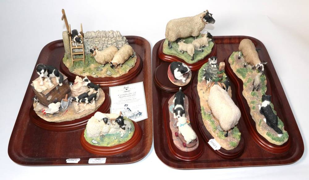 Lot 36 - Border Fine Arts Classic and Studio sheep and collie models including: 'Element of Surprise', model