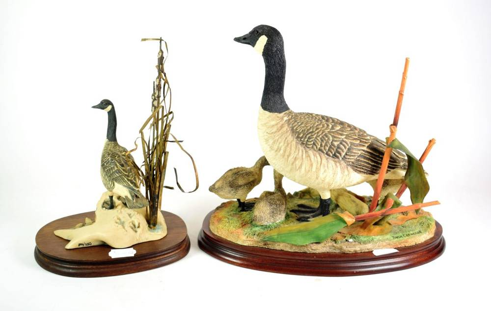Lot 22 - Border Fine Arts 'Canada Goose and Goslings' (Style Three), model No. B0882 by Jack Crewdson,...