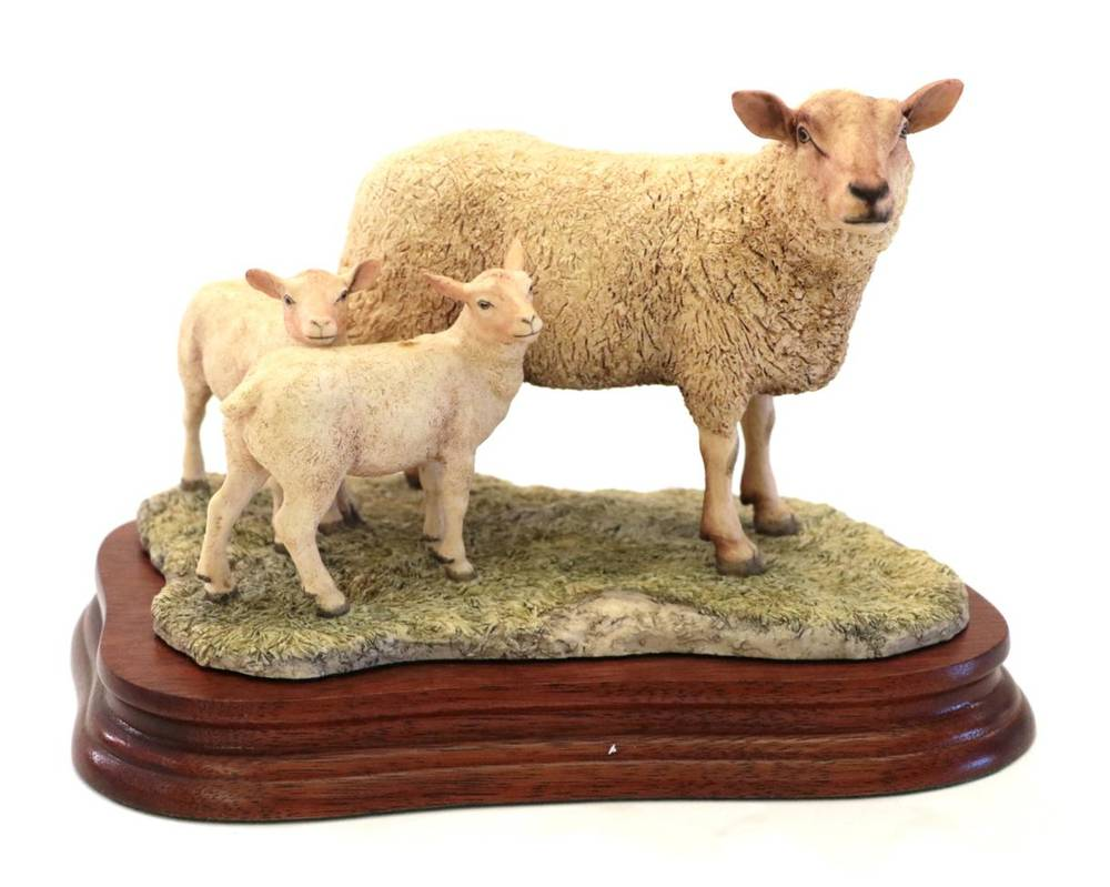 Lot 31 - Border Fine Arts 'Charolais Ewe and Lambs', modle No. L121 by Ray Ayres, limited edition...