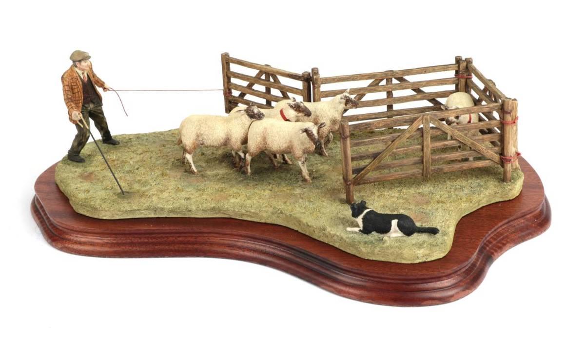 Lot 6 - Border Fine Arts 'Anxious Moment' (Penning Sheep), model No. B0584 by Ray Ayres, limited...