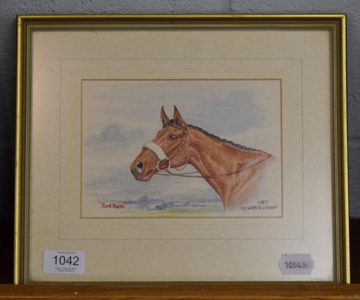 Lot 1042 - D.M & E.M Alderson, ''Red Rum'', signed and dated 1987, watercolour