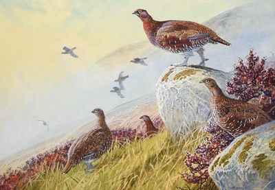 Lot 1015 - Peter Allis (b.1944) Covey of Grouse in a moorland landscape Signed, watercolour, 51cm by 73cm...