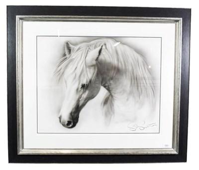 Lot 1007 - Steven Smith (Contemporary) ''Horse Study IV'' Signed, pencil, 56cm by 72cm  Artist's Resale...