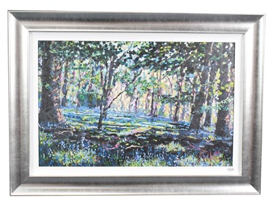 Lot 1026 - Timmy Mallett (b.1955) ''Bluebell Shadows'' Signed, numbered verso 106/195, giclee print on canvas