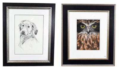 Lot 1029 - April Shepherd (Contemporary) ''Bright Eyes'' Signed, charcoal, together with Valerie Simms,...