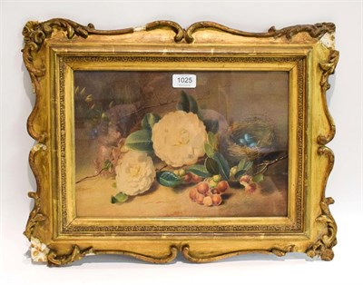 Lot 1025 - Attributed to William Bartholomus (?) RA, still life with grapes and bird nest, mixed media on...