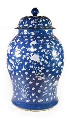 Lot 71 - A Chinese Porcelain Baluster Jar and Cover, 18th century, decorated in relief with birds...