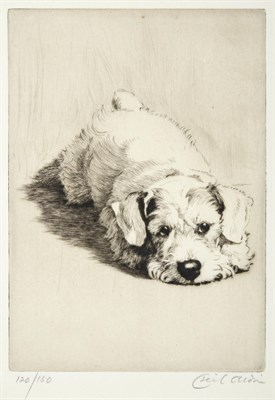 Lot 1001 - Cecil Charles Windsor Aldin (1870-1935) ''Sealyham Puppy''  Signed in pencil, numbered 120/180,...