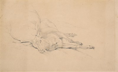 Lot 1011 - Sir Edwin Henry Landseer RA (1802-1873) Study of a dead stag Pencil, 15.5cm by 25cm...
