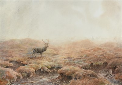 Lot 1012 - Vincent R Balfour Browne (1880-1963)  Stag in the mist  Initialled and dated 1948, watercolour,...