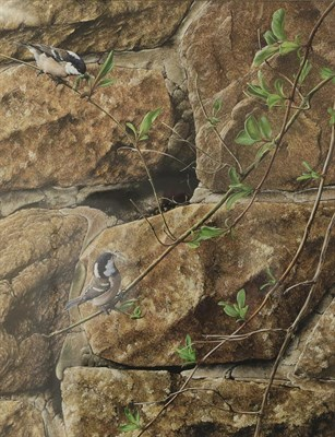 Lot 1018 - Alan M Hunt (b.1947)  Coal tits building a nest Signed and dated 1982, gouache, 40.5cm by...