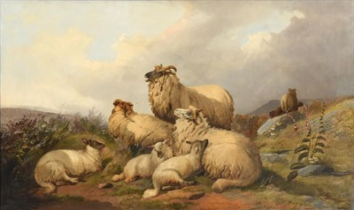 Lot 1027 - Circle of William Watson (19th century)  Sheep and lambs at rest on a fell top Oil on canvas,...