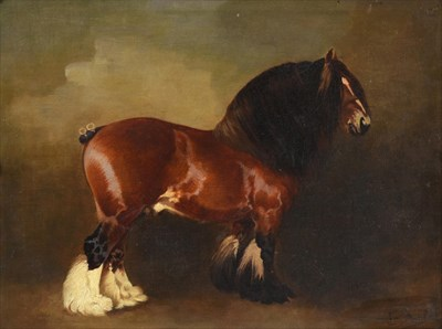 Lot 1041 - Attributed to Edith Anna Oenone Somerville (1858-1949)  Portrait of a heavy horse standing...