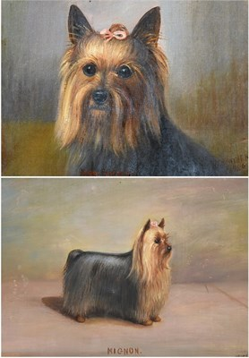 Lot 1050 - Henry Crowther (fl.1905-1939) ''Bobby Dazzler'' (Study of a Yorkshire Terrier) ''Mignon'' One...