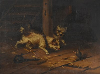 Lot 1051 - Attributed to George Armfield (1808-1893) Terriers ratting in a stable interior Oil on canvas,...
