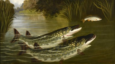 Lot 1056 - A Roland Knight (fl.1879-1921) ''Two to one bar one - Pike and Roach'' Signed, inscribed verso, oil
