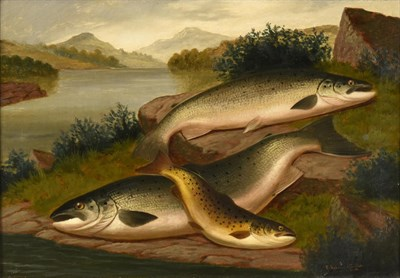 Lot 1057 - A Roland Knight (fl.1879-1921) ''Salmon and Trout of Loch Awe'' Signed, inscribed verso, oil on...