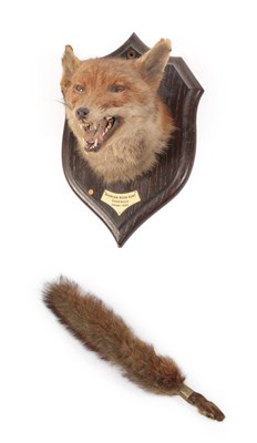 Lot 13 - Taxidermy: European Red Fox  Mask (Vulpes vulpes), dated January 1929, by Rowland Ward, 166...