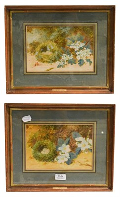 Lot 1014 - William Cruickshank (1848-1922) pair of still life with birds nests and eggs, signed mixed media on