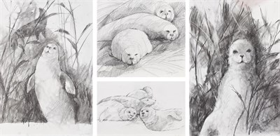 Lot 1078 - Gerry Jones (Contemporary) Study of seals Signed, pencil, together with 3 further seal studies...