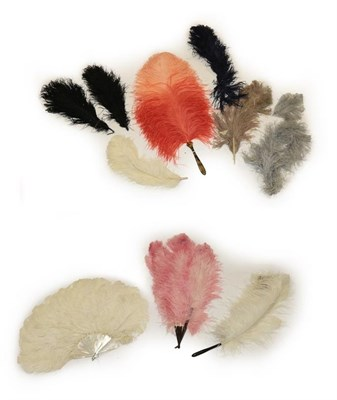 Lot 2041 - Assorted Late 19th/Early 20th Century Ostrich Feathers and Fans, comprising a white feather fan...