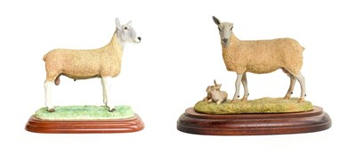 Lot 21 - Border Fine Arts 'Blue Faced Leicester Ewe and Lambs' (Style One), model No. L31 by Ray Ayres,...