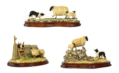 Lot 44 - Border Fine Arts 'Holding Her Ground' (Ewe, lamb and border collie), model No. B0198, limited...