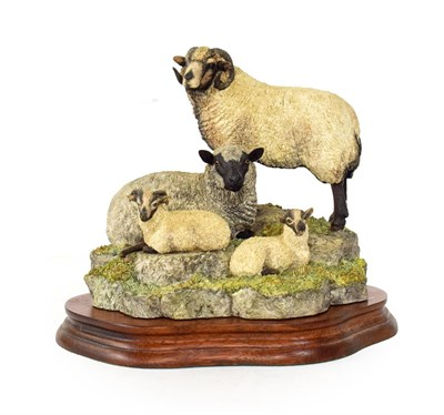 Lot 71 - Border Fine Arts 'Shetland Family Group' (Katmoget), model No. B0597C by Ray Ayres, limited edition