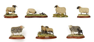 Lot 79 - Border Fine Arts Studio Sheep Groups Including: 'Bolted', model No. A1017, 'Herdwick Ram',...
