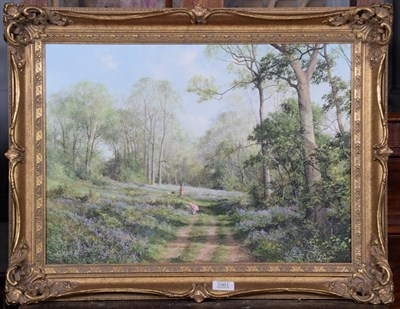 Lot 1001 - Caesar (Contemporary) Bluebell Wood 1986 Signed, oil on canvas 39cm by 54cm