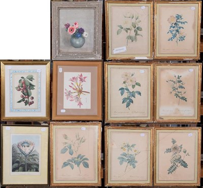 Lot 1040 - A collection of 19th and 20th century botanical prints, framed and glazed (qty)
