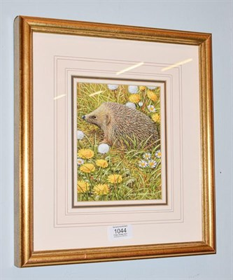 Lot 1044 - Ralph Waterhouse (Contemporary), A hedgehog, signed, gouach, 17cm by 13.5cm