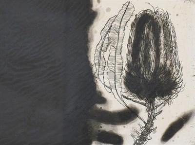 Lot 2018 - Dame Elizabeth Violet Blackadder DBE, RA, RSA (b.1931) Scottish ''Banksia'' Signed and numbered...