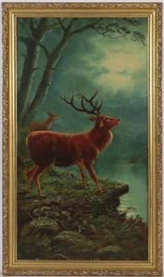 Lot 1027 - William James Smith Crampton (British, 1855-1935) Stags, pair of signed oil on canvas, 46cm by...
