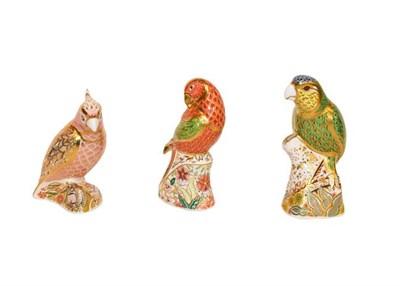 Lot 36 - Royal Crown Derby: Three bird paperweights, Amazon Green Parrot No. 1688/2500, Lorikeet No....