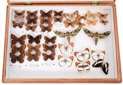 Lot 76 - Entomology: A Collection of World Butterflies & Moths, circa 1970-1980, a varied collection of...