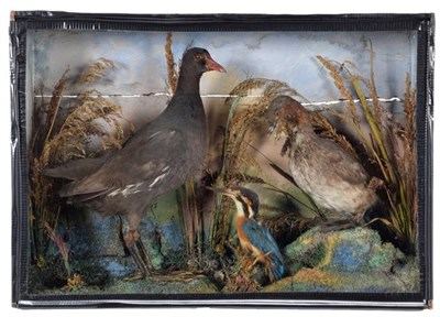 Lot 95 - Taxidermy: A Late Victorian Cased Diorama of British Birds, dated 1874, by H. Crook, Castle Street