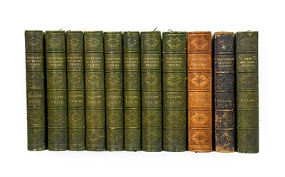 Lot 57 - Lowe (Edward Joseph). Ferns: British and Exotic, 1st edition, mixed issues, London: Groombridge and