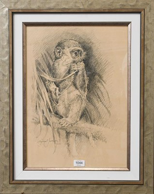 Lot 1044 - Michael Jackson (Contemporary) Study of a monkey, signed and dated 2011, pencil, 49cm by 35cm...