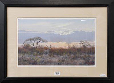 Lot 1048 - Wim Kosch (Contemporary) South African, Kudu, Signed and dated (19)96, oil on board, 31cm by...