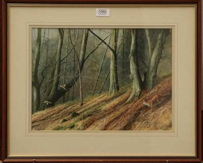 Lot 1060 - Jeremy Paul (20th century) Fox pursuing pheasant in a woodland, Signed, watercolour, together...