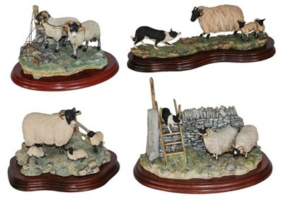 Lot 24 - *  Border Fine Arts Sheep Groups Comprising: 'Element of Surprise' (Collie and Sheep), model...